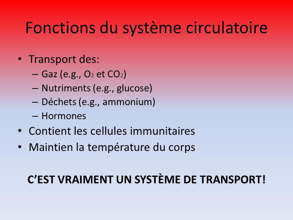 Fonctions du système circulatoire