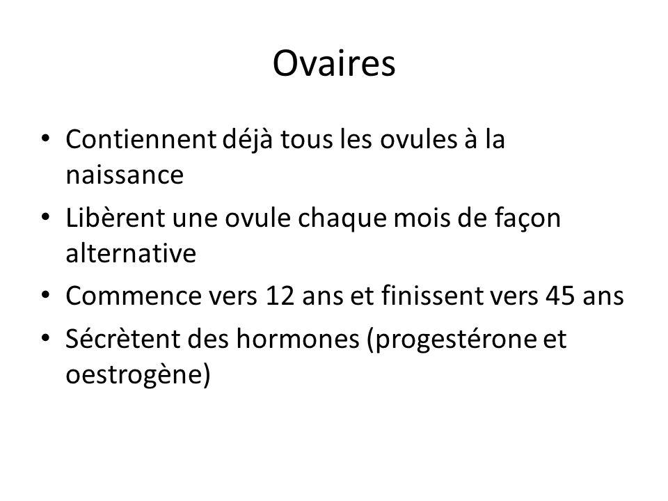 Ovaires Contiennent déjà tous les ovules à la naissance