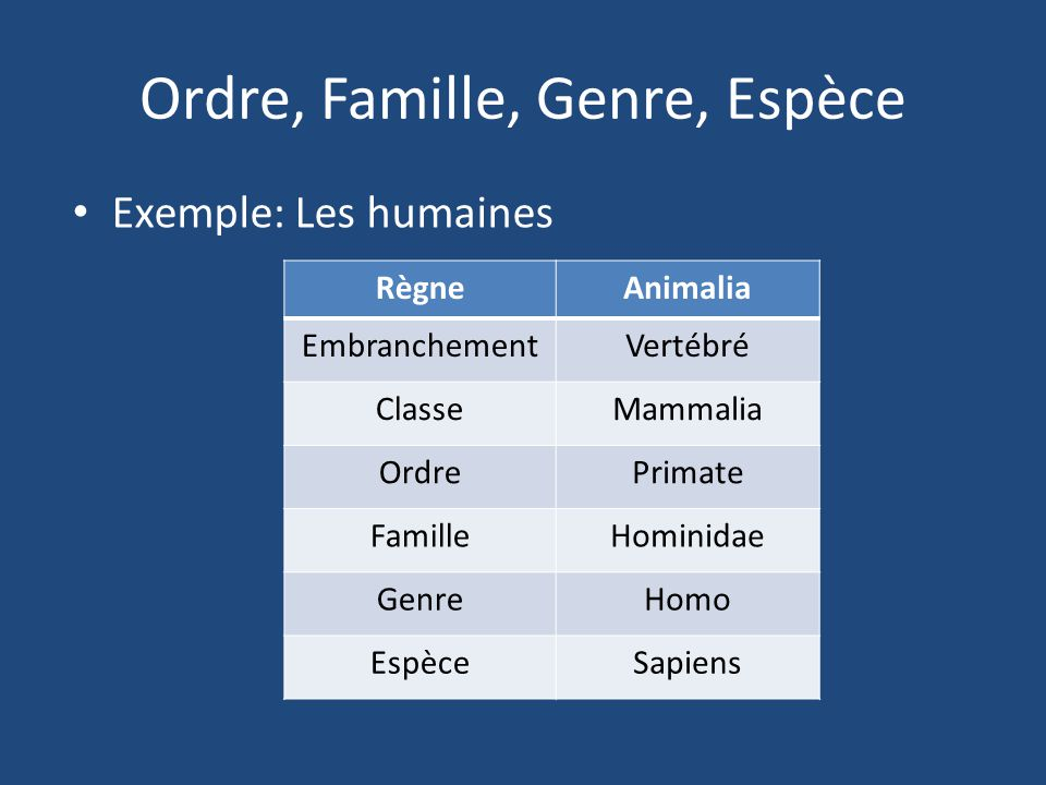 Ordre, Famille, Genre, Espèce
