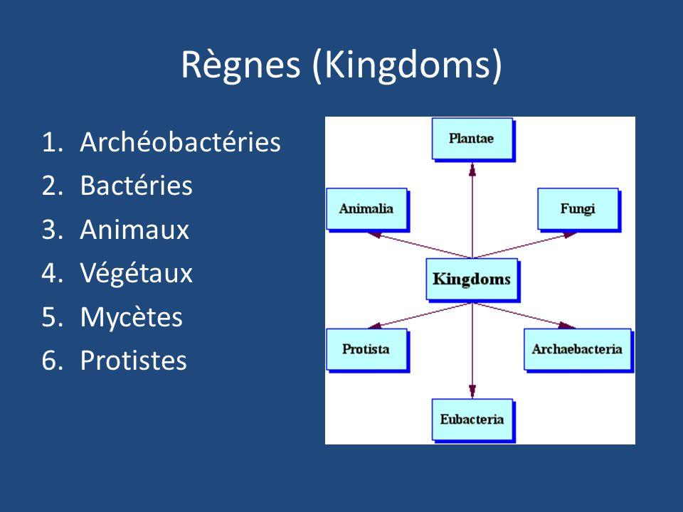 Règnes (Kingdoms) Archéobactéries Bactéries Animaux Végétaux Mycètes