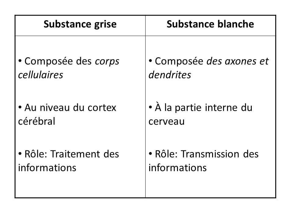 Substance grise Substance blanche