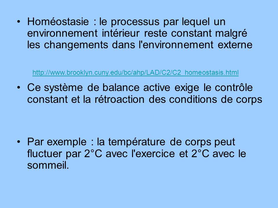 Homéostasie : le processus par lequel un environnement intérieur reste constant malgré les changements dans l environnement externe