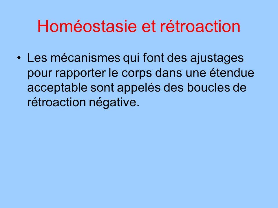 Homéostasie et rétroaction