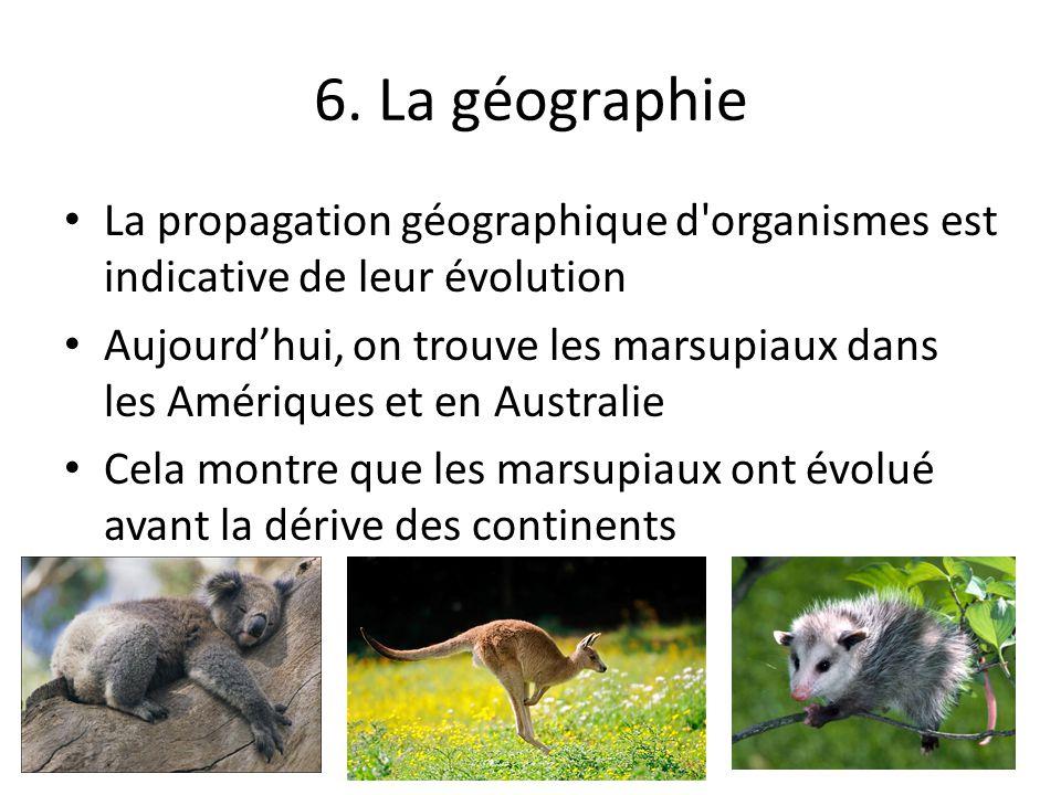 6. La géographie La propagation géographique d organismes est indicative de leur évolution.