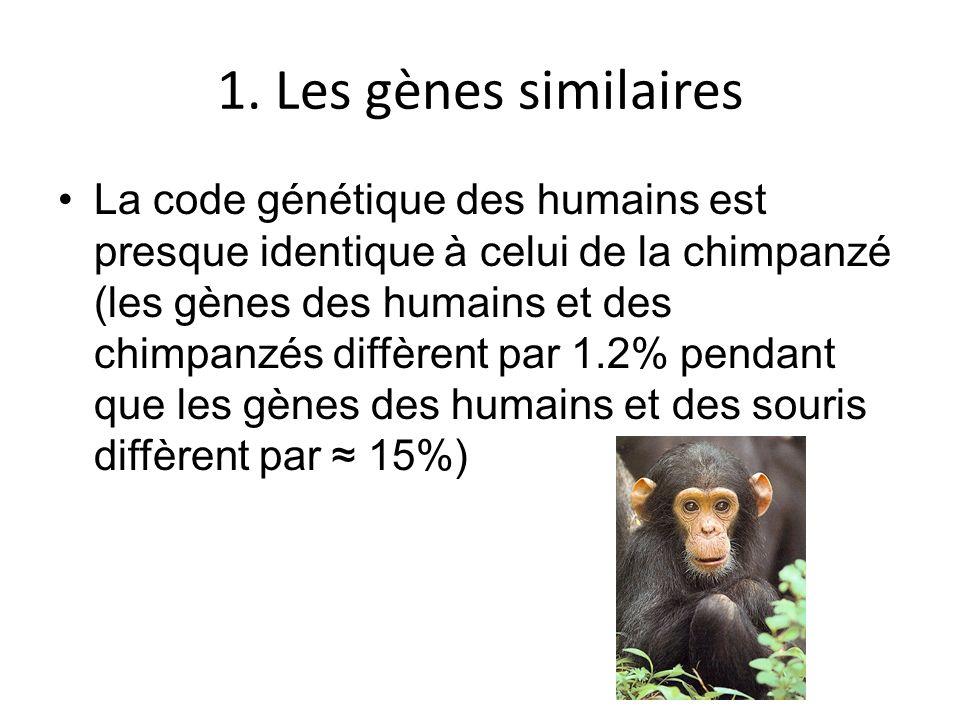 1. Les gènes similaires