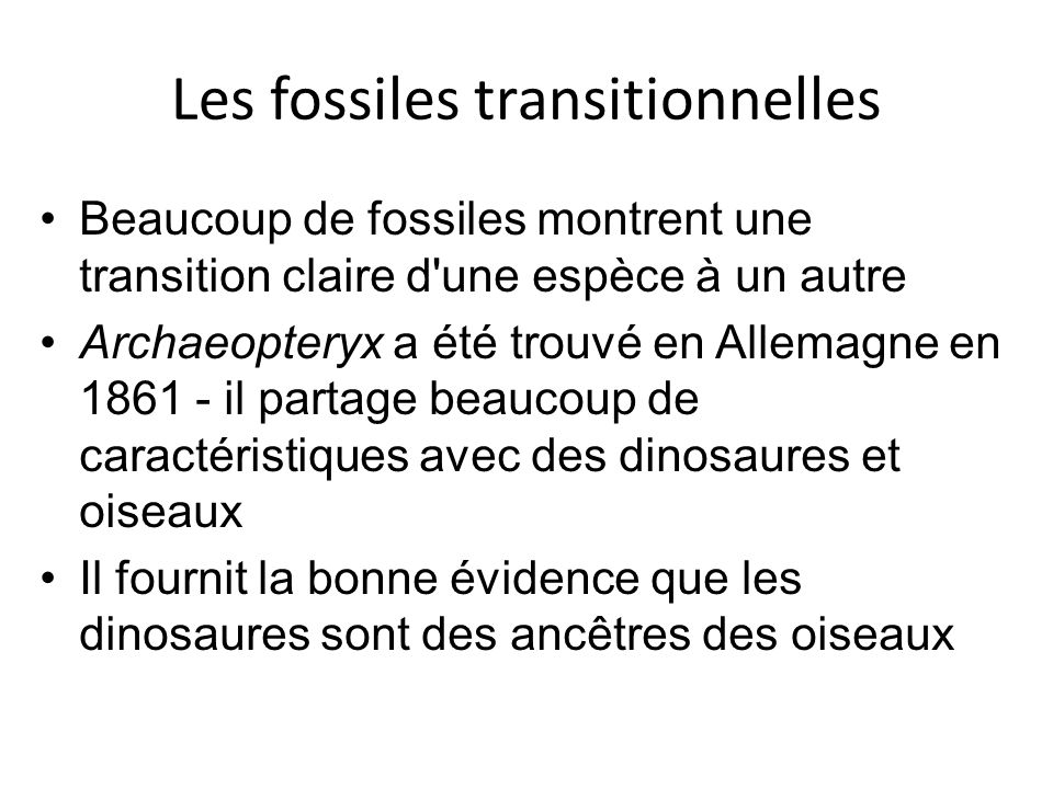 Les fossiles transitionnelles