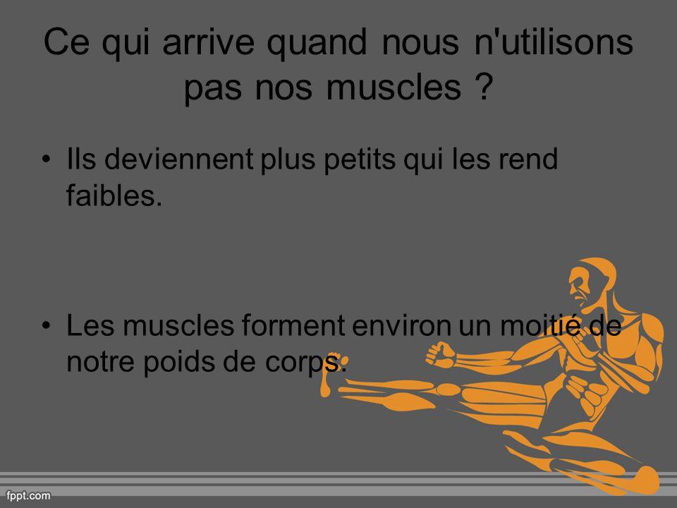 Ce qui arrive quand nous n utilisons pas nos muscles