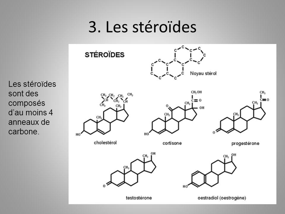 3. Les stéroïdes Les stéroïdes sont des composés d'au moins 4 anneaux de carbone.