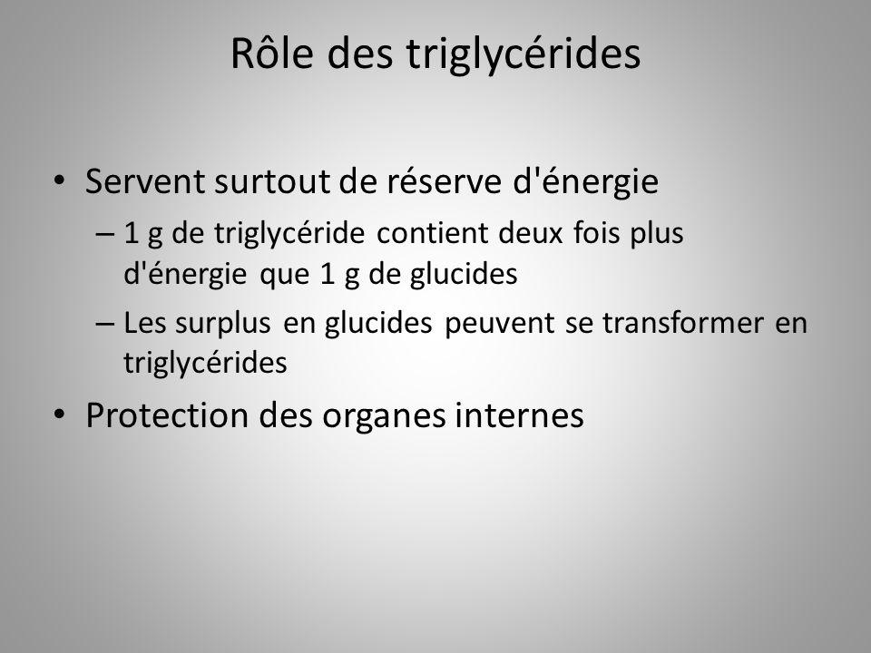 Rôle des triglycérides
