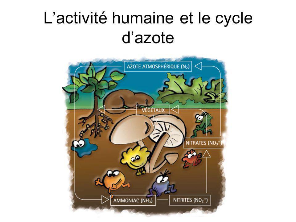 L'activité humaine et le cycle d'azote