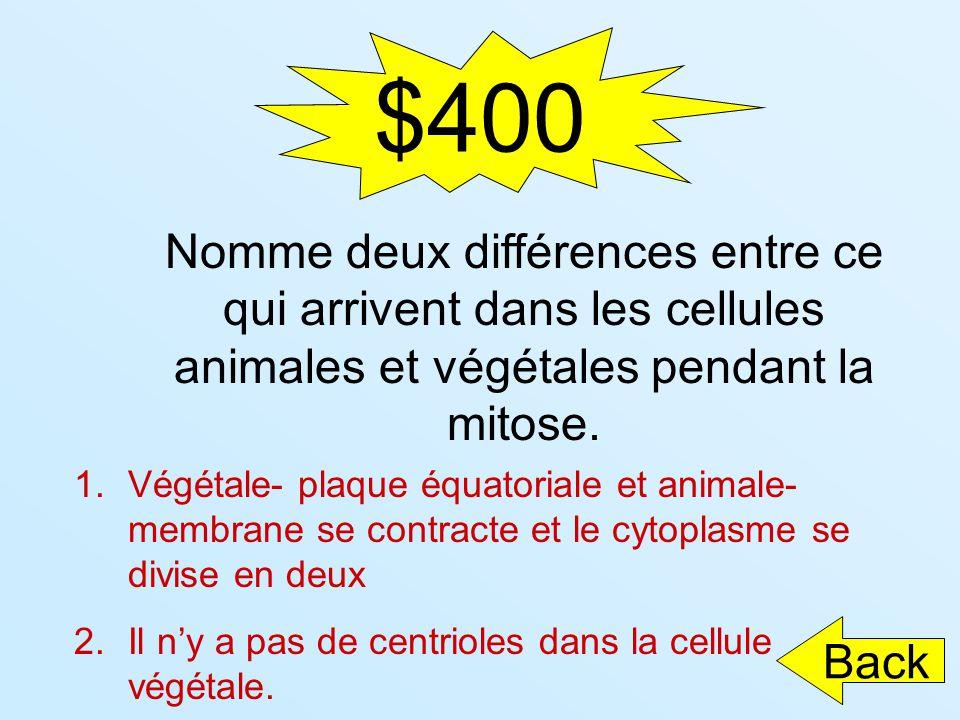 $400 Nomme deux différences entre ce qui arrivent dans les cellules animales et végétales pendant la mitose.