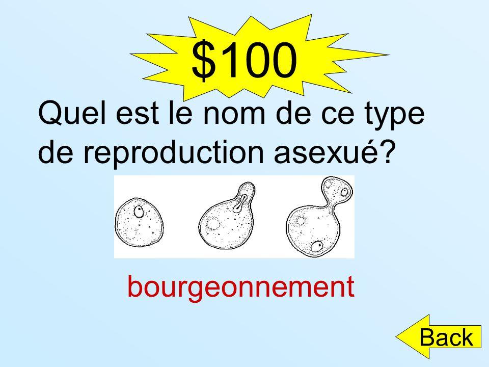 $100 Quel est le nom de ce type de reproduction asexué bourgeonnement