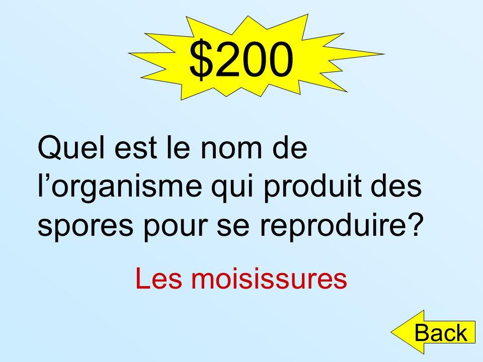 $200 Quel est le nom de l'organisme qui produit des spores pour se reproduire Les moisissures Back