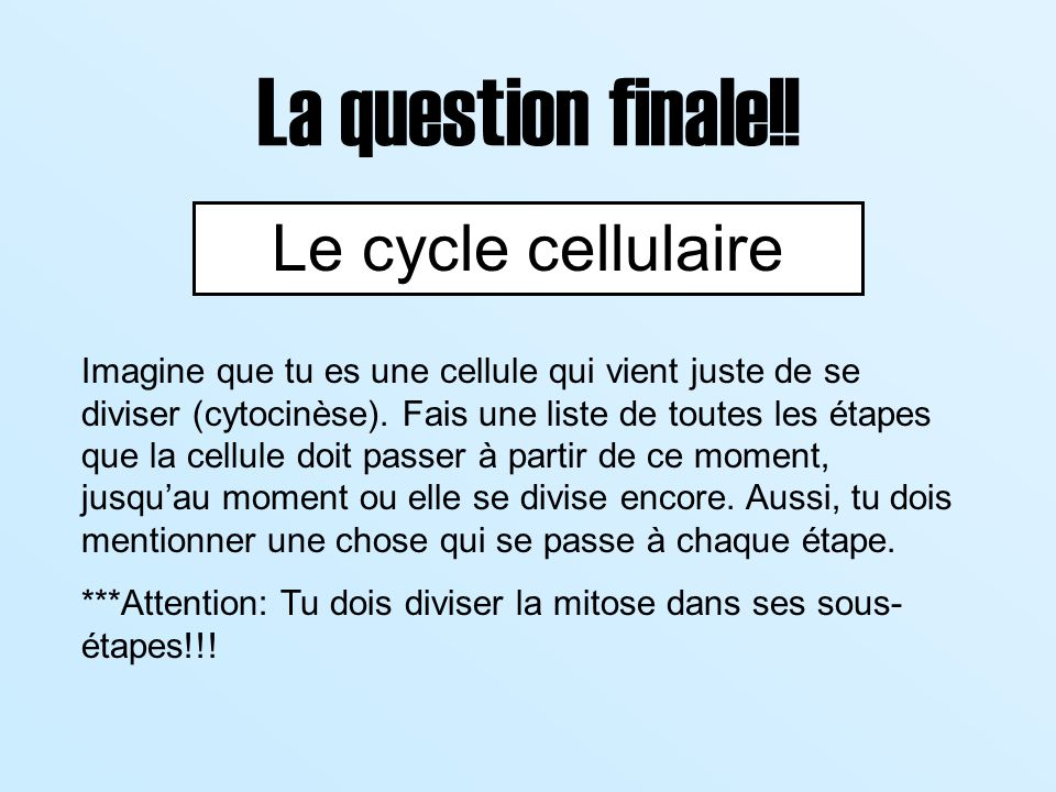 La question finale!! Le cycle cellulaire