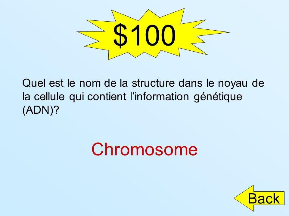 $100 Quel est le nom de la structure dans le noyau de la cellule qui contient l'information génétique (ADN)
