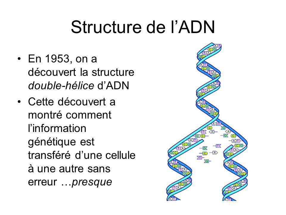 Structure de l'ADN En 1953, on a découvert la structure double-hélice d'ADN.