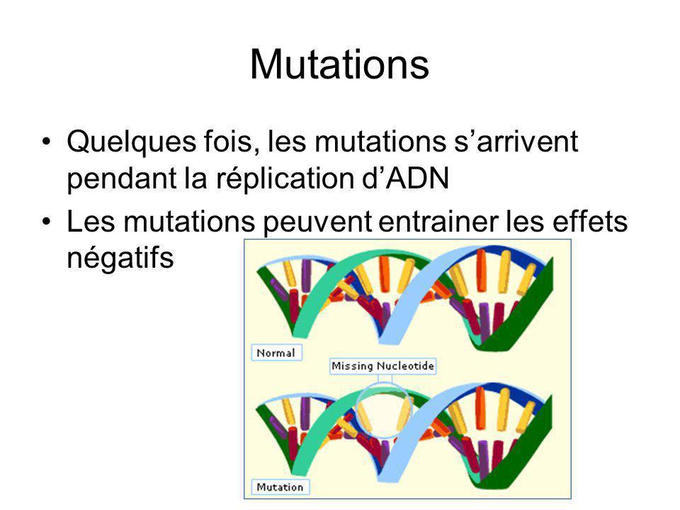 Mutations Quelques fois, les mutations s'arrivent pendant la réplication d'ADN.