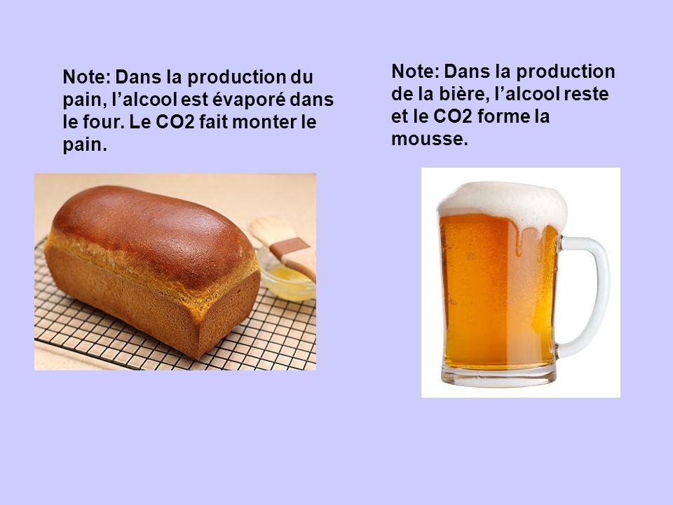 Note: Dans la production de la bière, l'alcool reste et le CO2 forme la mousse.