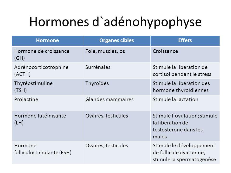 Hormones d`adénohypophyse