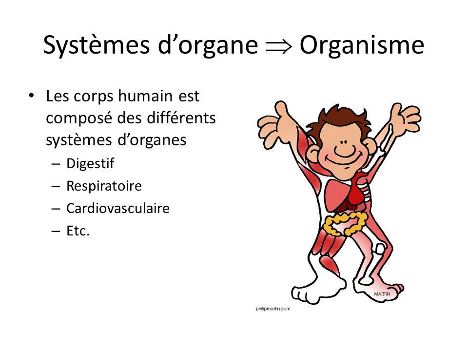 Systèmes d'organe  Organisme