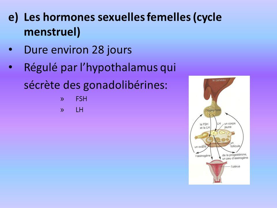 Les hormones sexuelles femelles (cycle menstruel)