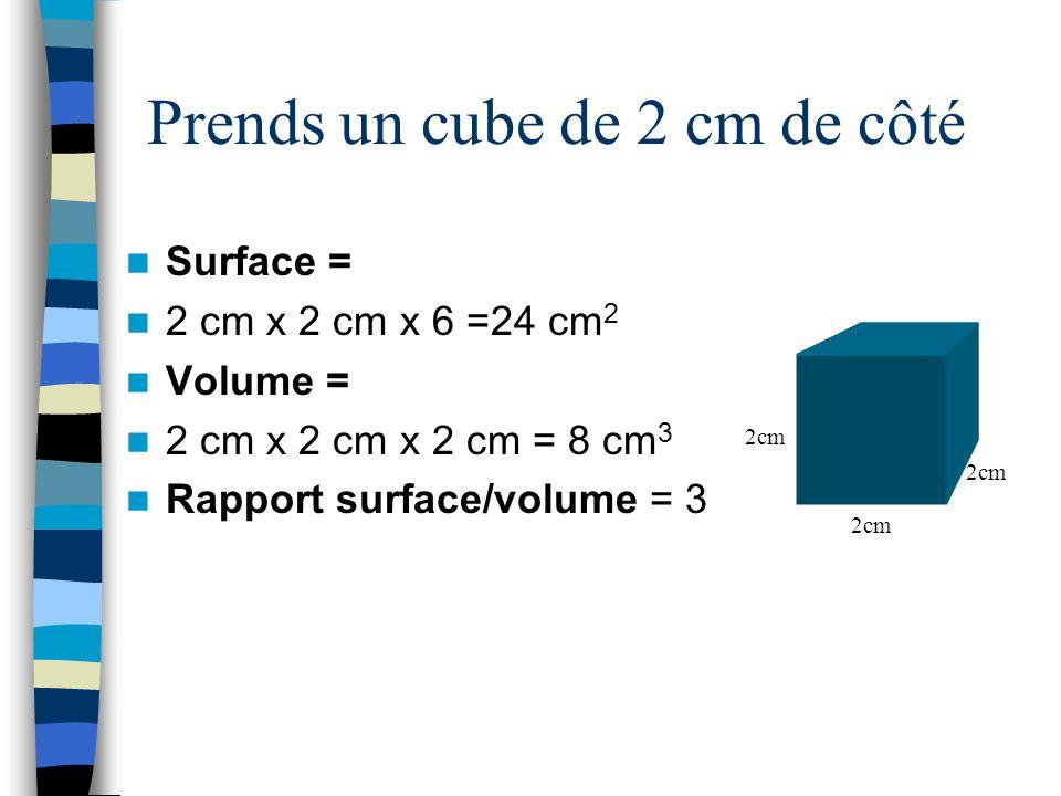Prends un cube de 2 cm de côté