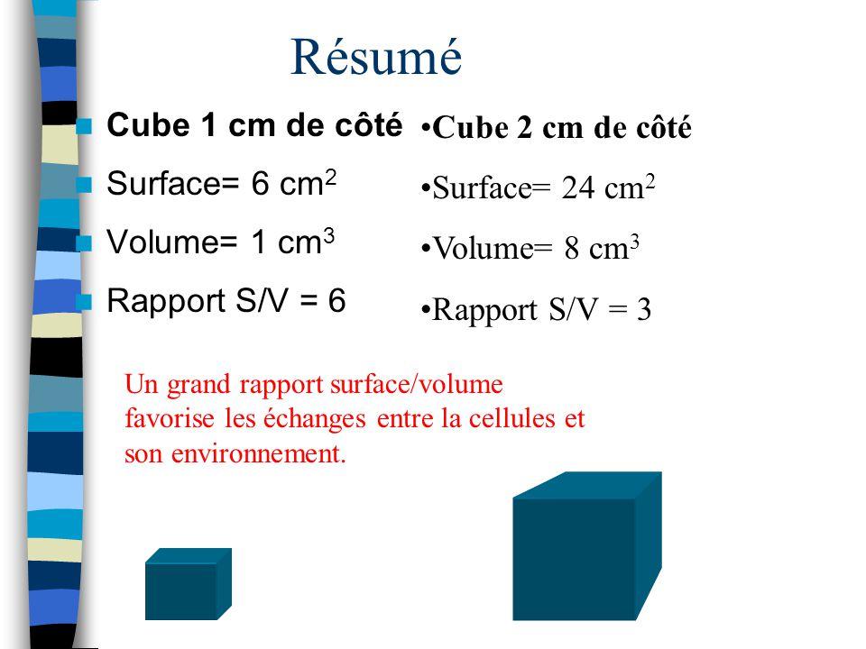 Résumé Cube 1 cm de côté Cube 2 cm de côté Surface= 6 cm2
