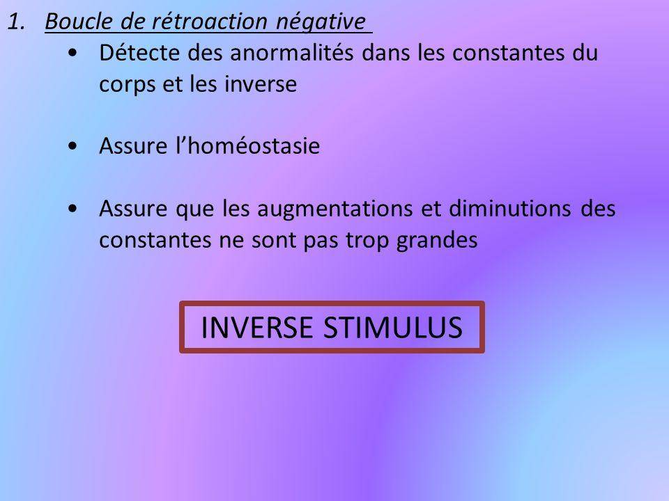 INVERSE STIMULUS Boucle de rétroaction négative