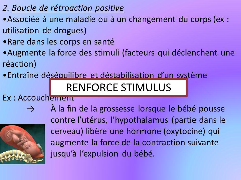 RENFORCE STIMULUS 2. Boucle de rétroaction positive