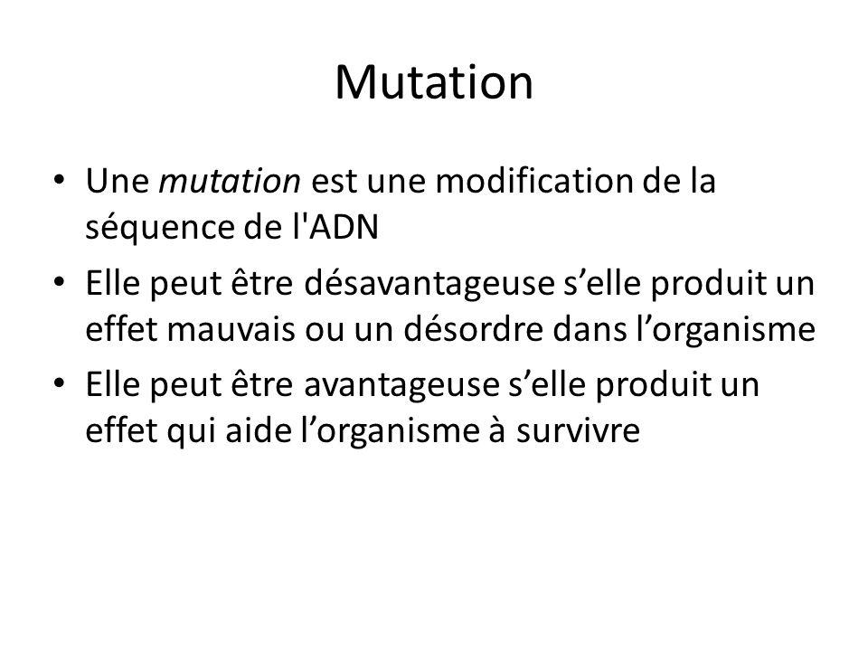 Mutation Une mutation est une modification de la séquence de l ADN