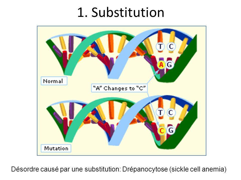 1. Substitution Désordre causé par une substitution: Drépanocytose (sickle cell anemia)