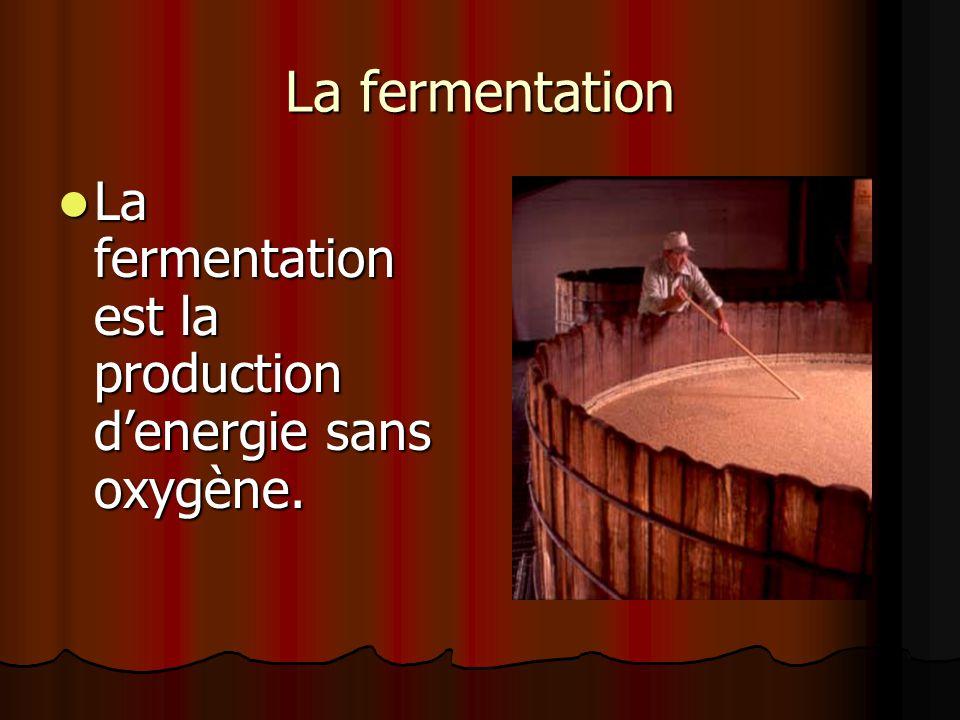 La fermentation La fermentation est la production d'energie sans oxygène.