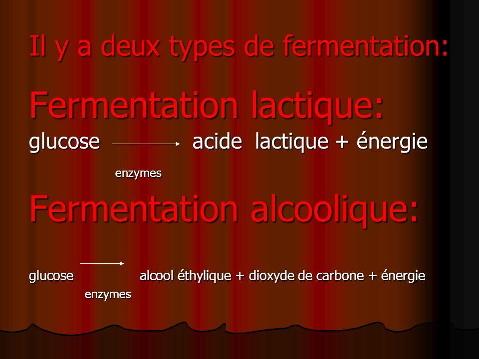 Il y a deux types de fermentation: