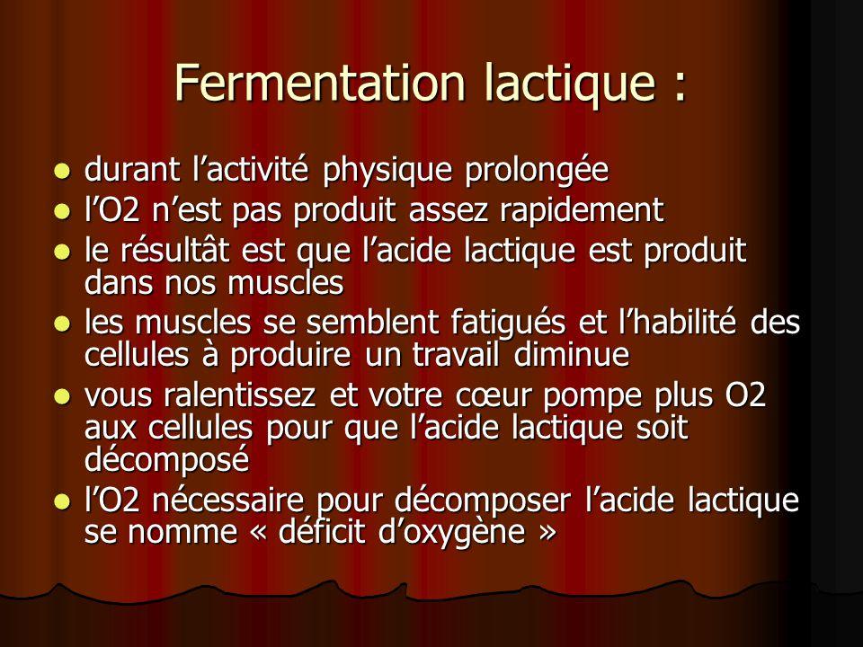 Fermentation lactique :