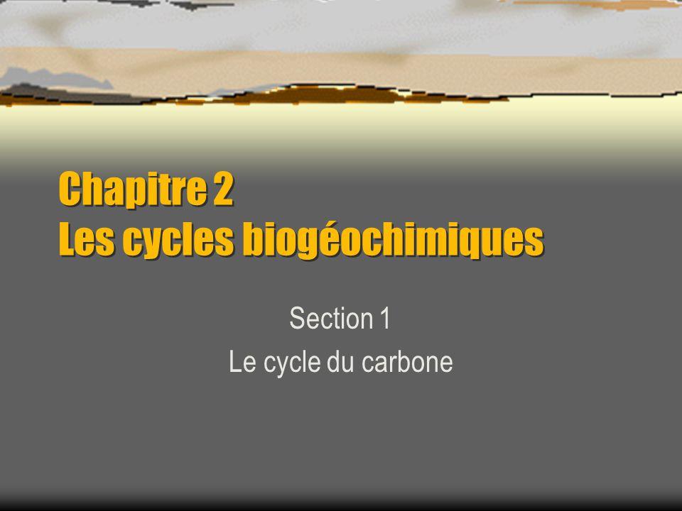 Chapitre 2 Les cycles biogéochimiques