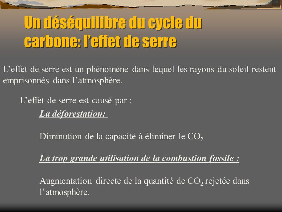 Un déséquilibre du cycle du carbone: l'effet de serre