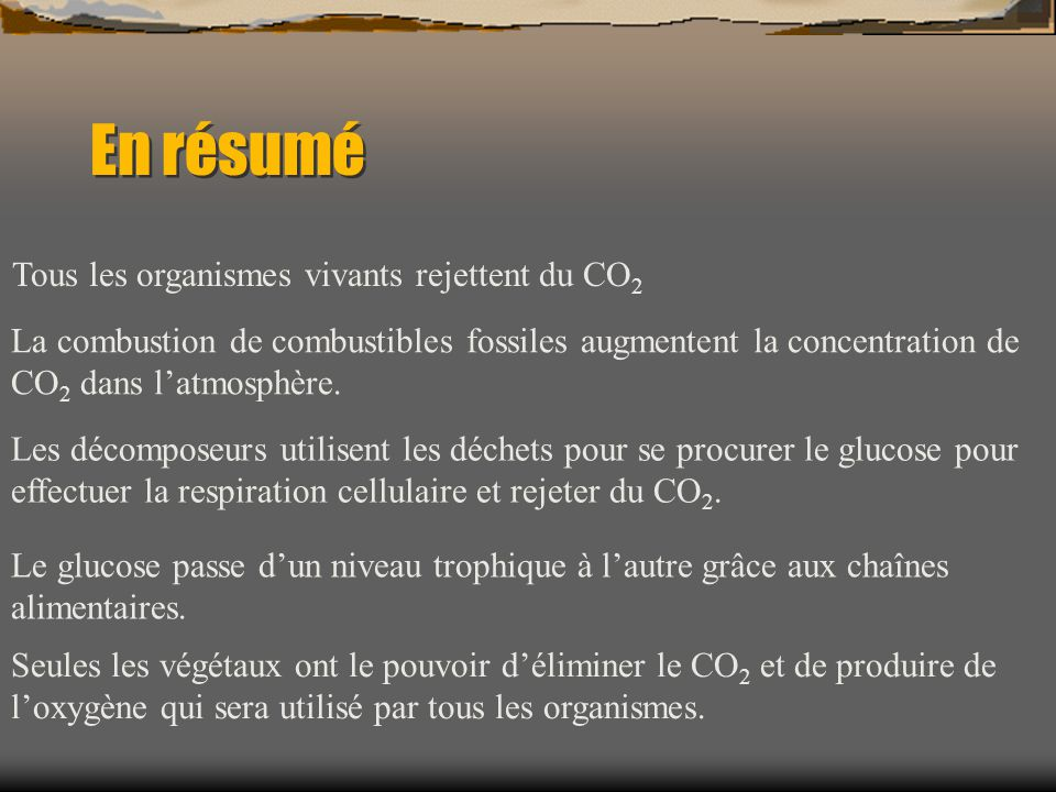 Tous les organismes vivants rejettent du CO2