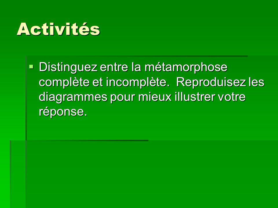 Activités Distinguez entre la métamorphose complète et incomplète.