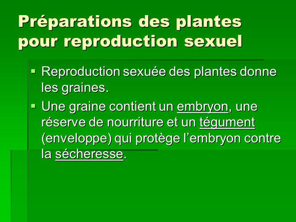 Préparations des plantes pour reproduction sexuel
