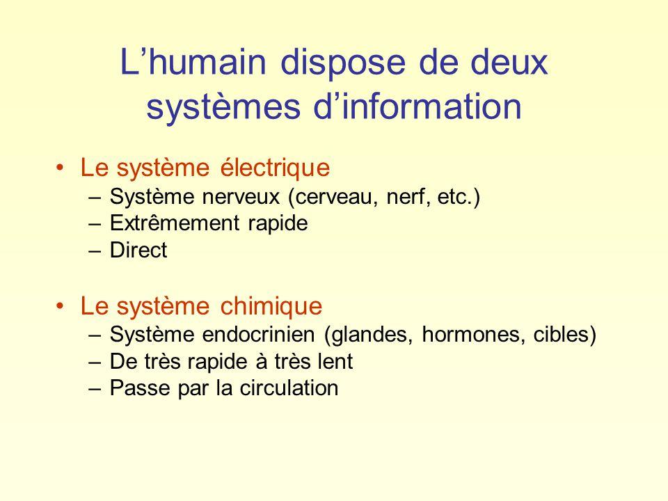 L'humain dispose de deux systèmes d'information