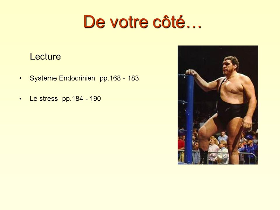De votre côté… Lecture Système Endocrinien pp.168 - 183
