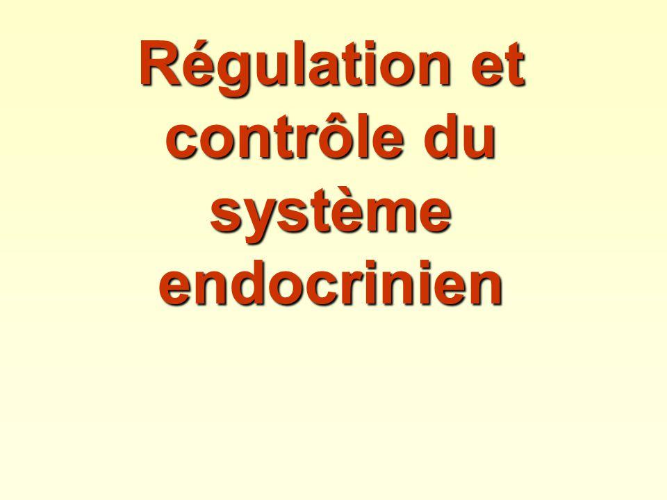 Régulation et contrôle du système endocrinien