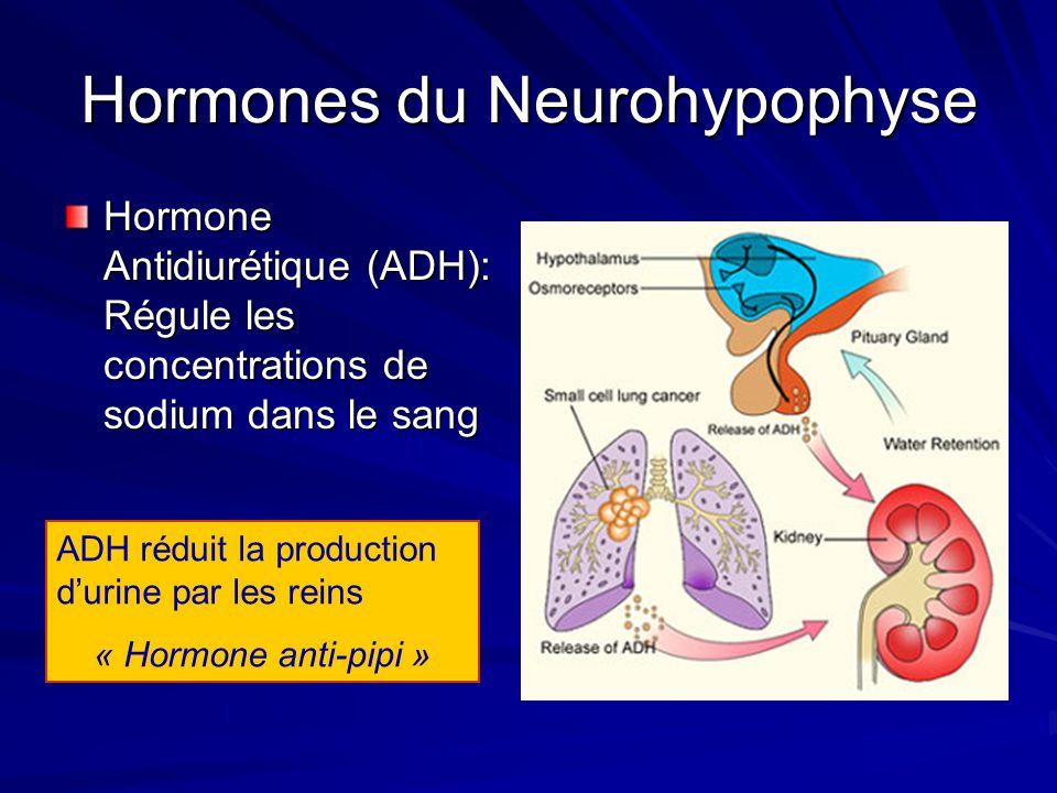 Hormones du Neurohypophyse