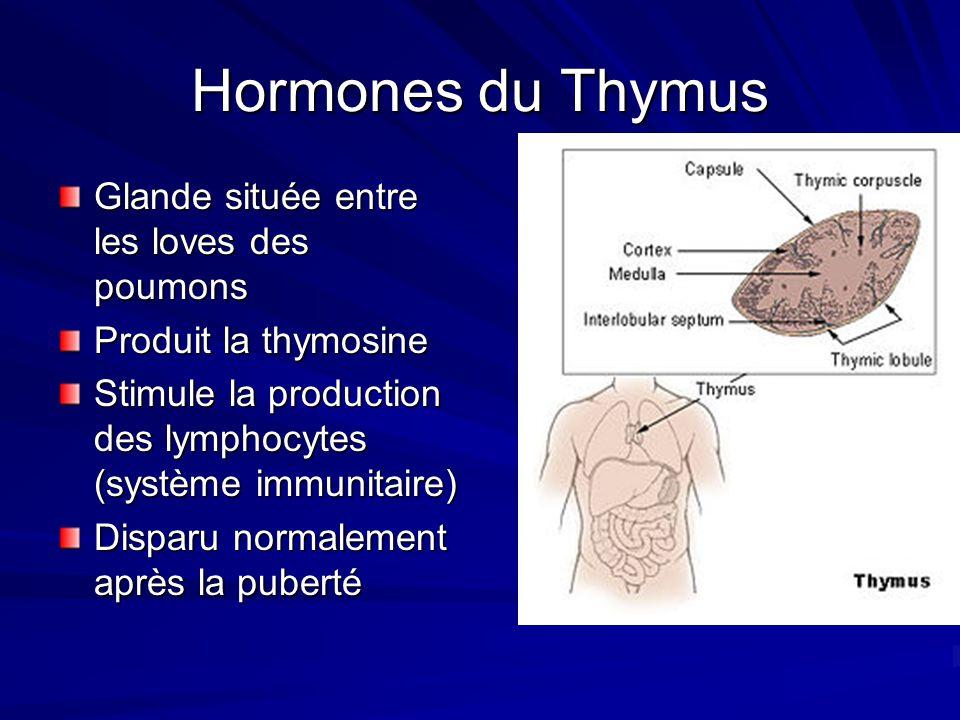 Hormones du Thymus Glande située entre les loves des poumons