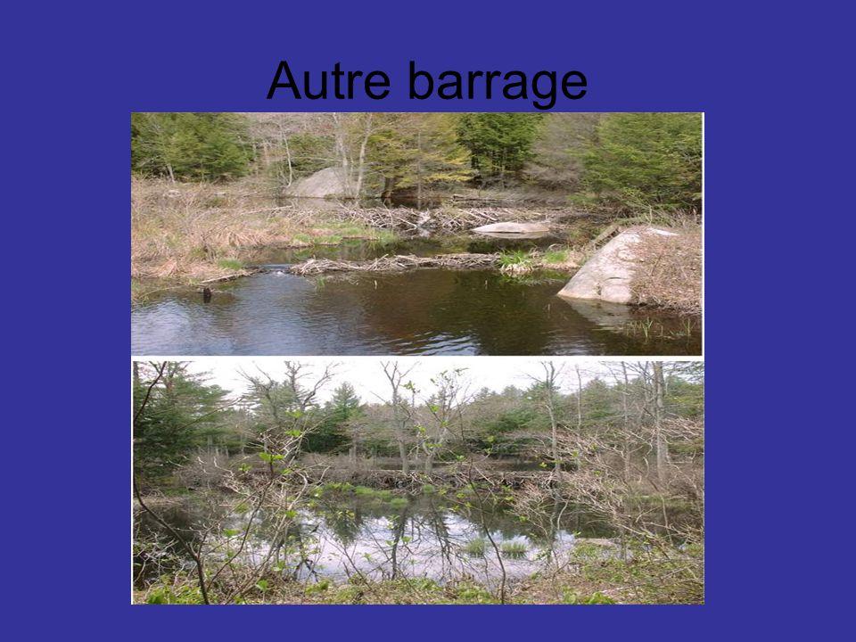 Autre barrage
