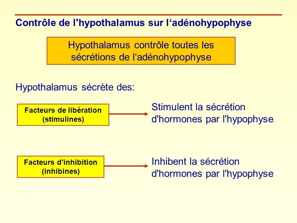 Facteurs de libération (stimulines) Facteurs d inhibition (inhibines)