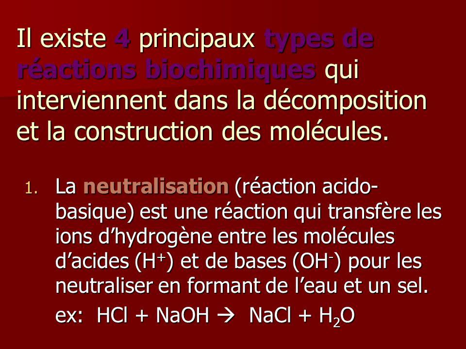 Il existe 4 principaux types de réactions biochimiques qui interviennent dans la décomposition et la construction des molécules.