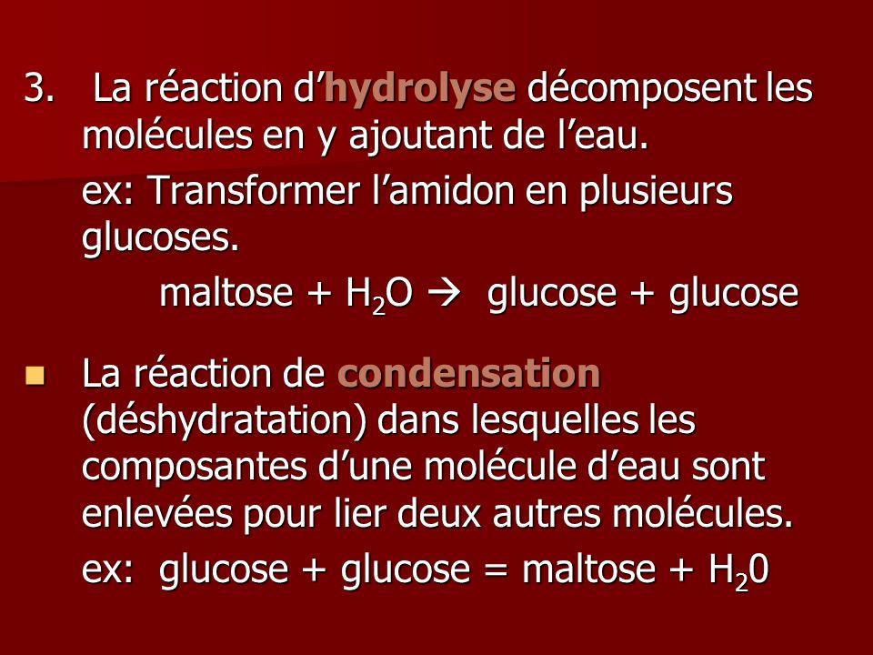 3. La réaction d'hydrolyse décomposent les molécules en y ajoutant de l'eau.