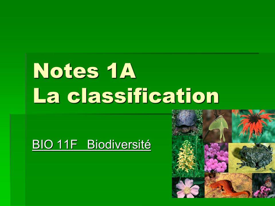 Notes 1A La classification