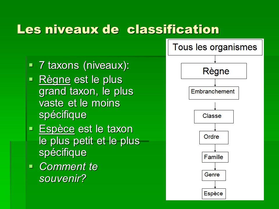 Les niveaux de classification